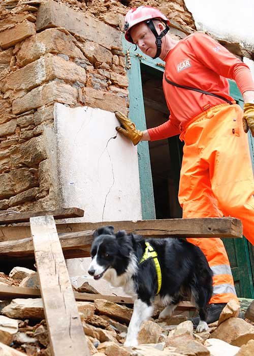 Rescue worker with dog looking for survivors after natural disaster