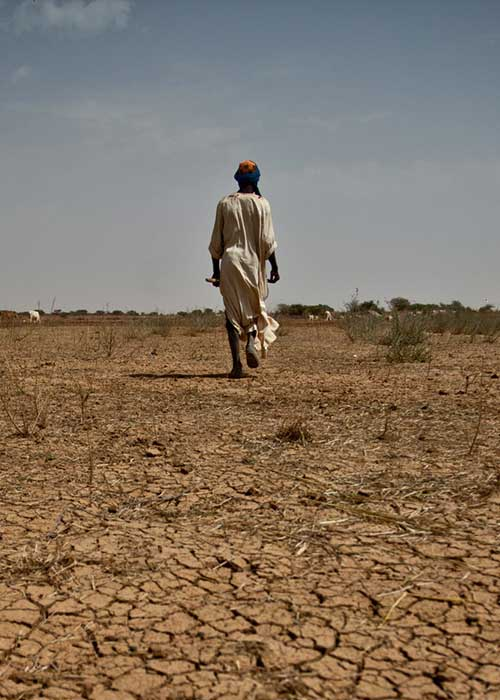 Woman walking away from the camera on very dry soil